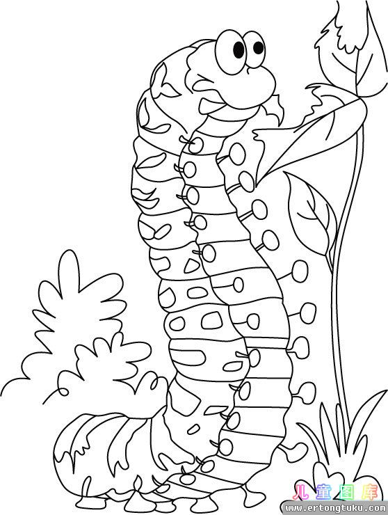 The Caterpillar And The Polliwog Coloring Pages