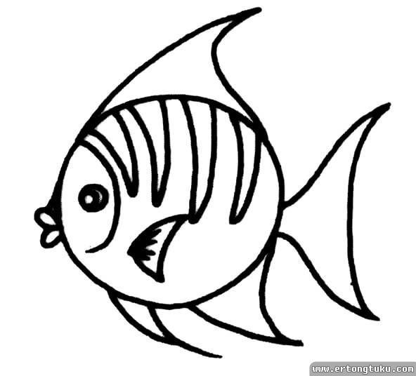 儿童简笔画动物鱼_海洋热带鱼简笔画_儿童动物简笔画-儿童图库
