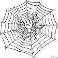 蜘蛛简笔画