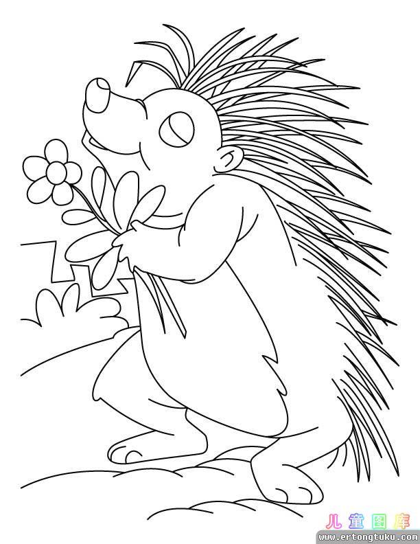 卡通豪猪涂色画 儿童动物填色图片 儿童图库
