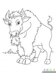 卡通野牛涂色画