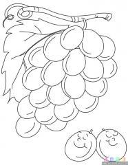葡萄涂色画