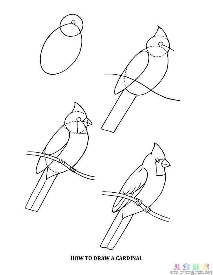 如何画小鸟