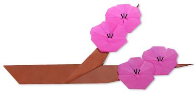 折纸梅花的方法和步骤图解