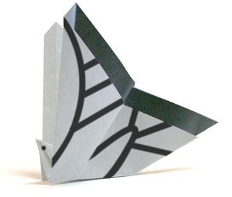 燕尾蝶折纸和步骤图解