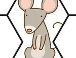 异形积木拼板:老鼠的房子